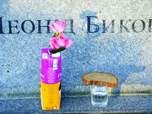 http://www.leonidbykov.ru/forum/uploads/1082_dsc04921_yarche.jpg